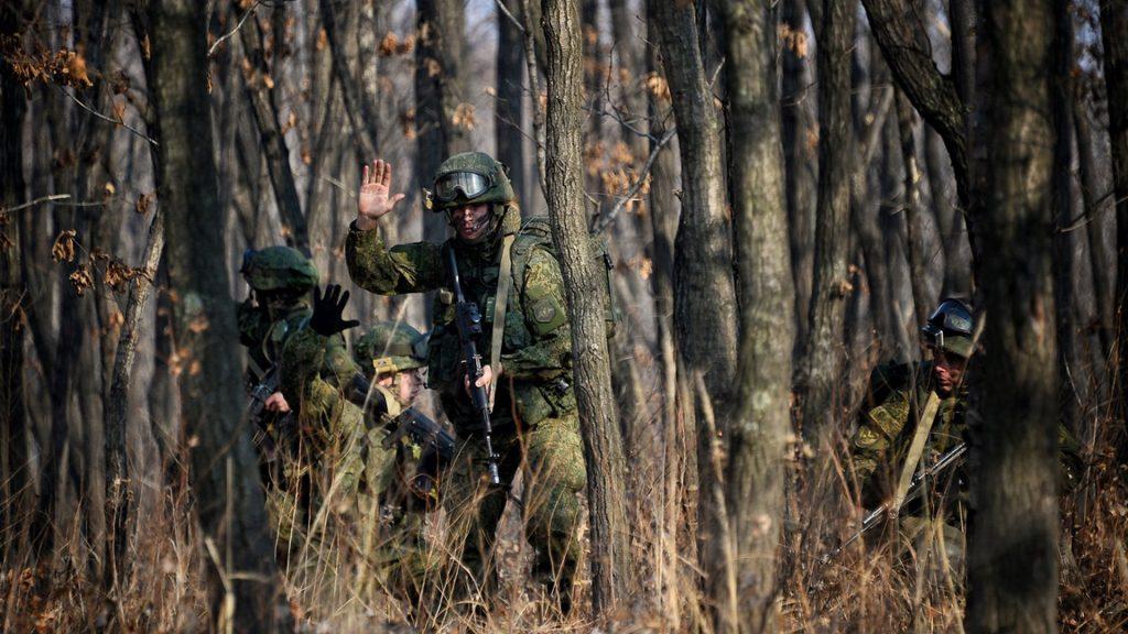 Военные в лесу